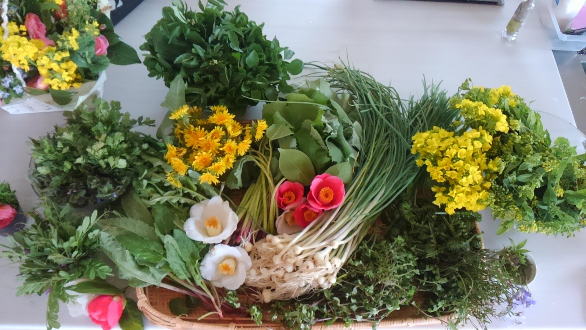 里山の恵み 山菜や野草